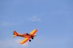 14-Avions anciens  8 mai (43)